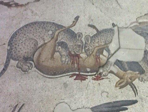 Museum of Great Palace Mosaics - cheetahs eating prey