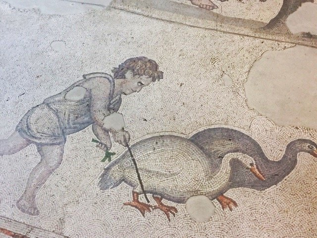 Museum of Great Palace Mosaics - geese